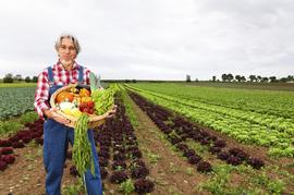 BLUEFIT Projekttag an der Schule - Info nachhaltige Lebensmittelprodukton